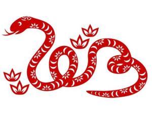 large_year_of_the_snake_(Medium)