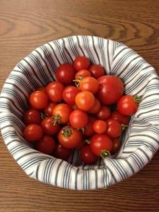 Remember: Gardening is Zombie Preparedness.