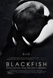 Movie Review: Blackfish