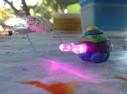 LED Bots